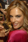 th_96677_fashiongallery_VSShow08_Backstage_AlessandraAmbrosio-32_122_926lo.jpg
